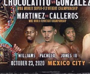 マルティネスvsカレロス 「結果」 WBC世界フライ級戦
