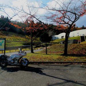 大湊公営企業局にある「せせらぎ公園」の紅葉。