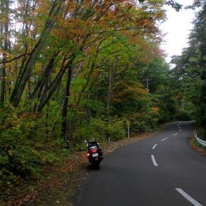 釜臥山の紅葉