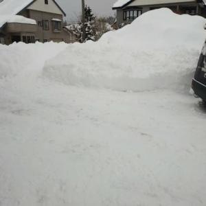 今日も大雪ですが。