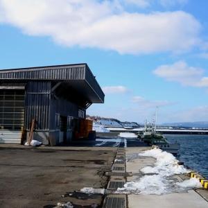 冬の漁港2