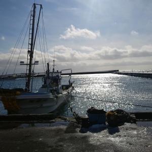 冬の漁港3