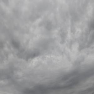 おはようございます。 朝7時。 どんより曇り空。