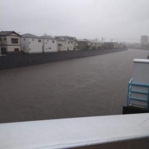 台風19号 柏尾川の様子 12日9時半