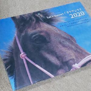 ヨナグニウマのカレンダー2020