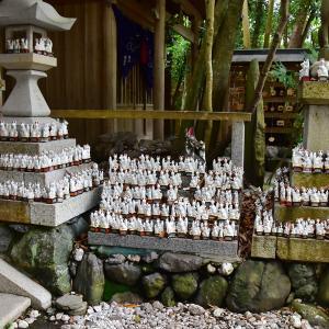 2019-07-08 茜社・豊川茜稲荷神社 2