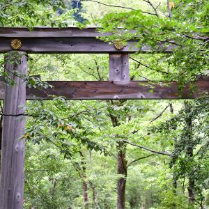 2019-08-22 穂高神社(奥宮)1