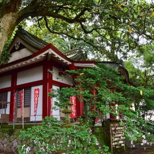 2019-06-03 葛見神社 4