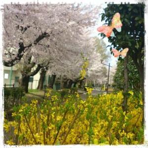 花咲く春に