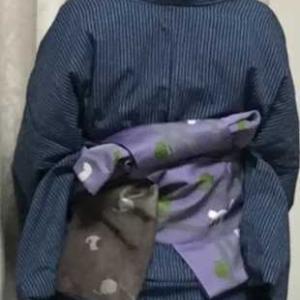 青灰縞伊勢木綿着物の紫猫柄帯