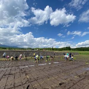 農業から「道」の世界を探求する農道へ