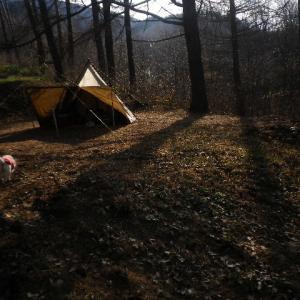 今年最終キャンプえっ15度?( ^ω^ )翌日は雪