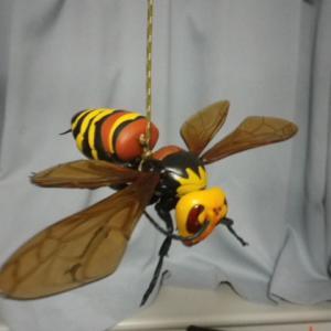スズメバチ様達(ノ´∀`*)こっちの方がオミヤンマ君より良いかも