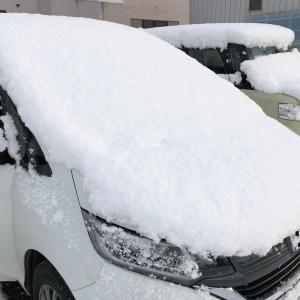 遂に雪が!?