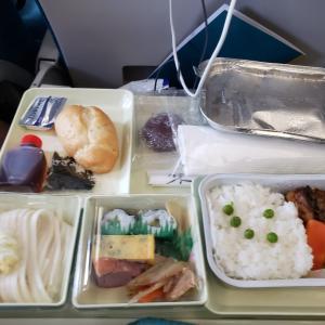 ベトナム航空機内食と荷物検査