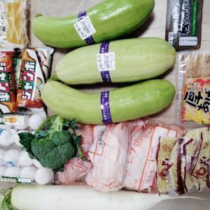 今日の食品の買い物