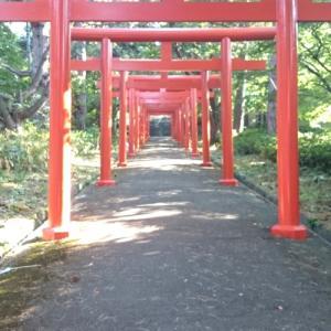 札幌伏見稲荷神社♪