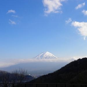 今日の富士山(甲府帰りから)