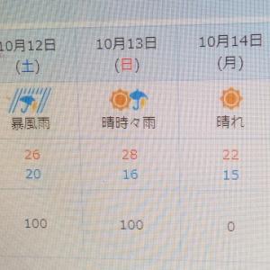 絶対的降水確率