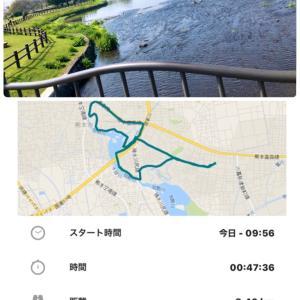 コロナ閉店 (*´-ω-`)・・・涙
