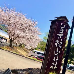 桜見物ジョギングその⑦天水 で合計14.11km