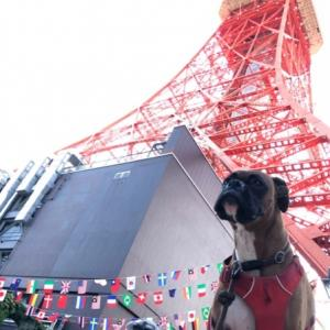 TOKYO2020 ついに開幕~🇯🇵