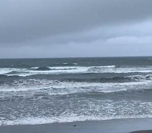 江の島水族館前今日の波