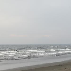 江ノ島水族館前波情報