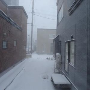 吹雪の北海道