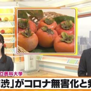 柿渋がコロナ無害化