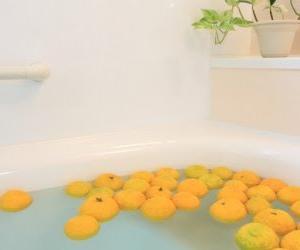 11月8日(金)柚子の香りを楽しむ会【残1名!】
