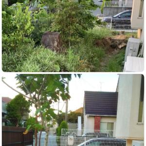 人生が変わる?!荒れ放題の庭からお庭カフェが出来る庭へ