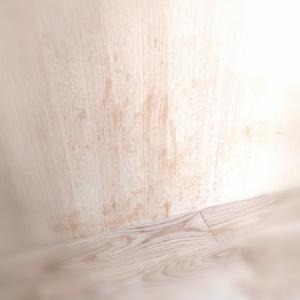 【悲劇】無垢材の家とズボラ追記