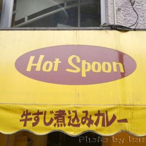 濃厚ルゥのハンバーグカレー Hot Spoon(ホットスプーン)@新宿