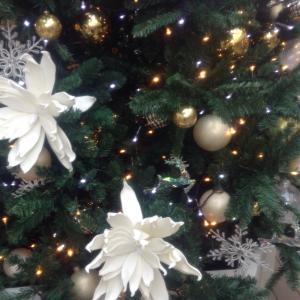 トナカイ気分で今日も飛ぶ * メリークリスマス!