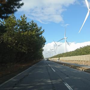 風車街道に行ってきました。