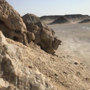 バハレイヤオアシス砂漠の魅力とは?