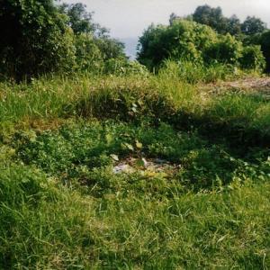 鷲尾山に於ける戦争遺跡の公的資料の誤りを正す