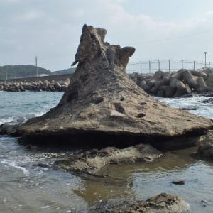 「スナフキンの帽子岩」を皆でSNS名所に(福岡県芦屋町)