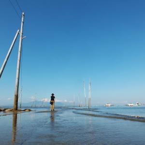 熊本県の海に続く海床路を14ヶ所発見(机上)