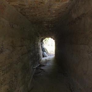 鳥居のトンネルと謎の隧道(八幡浜市・愛宕山)