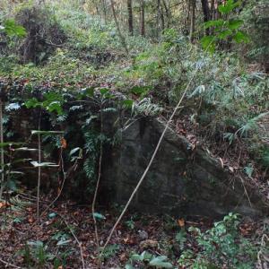 日本最古の近代の復元戦争遺跡・東鶏冠山北堡塁(高松市)