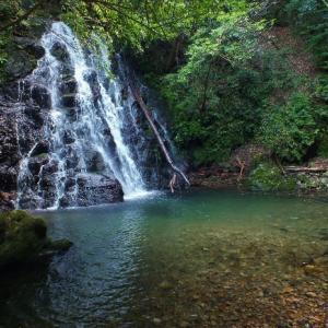 3月迄入山禁止だった志和滝(四万十町)