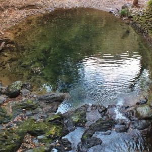 奇勝!水が流れない滝壺・不動滝(大月町)