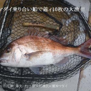 マダイ乗り合い船で爺ィ10枚の大漁 !!