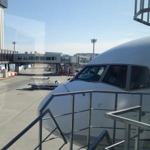 大阪伊丹空港に到着