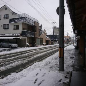 ついに、ついに雪が降りましたね!!
