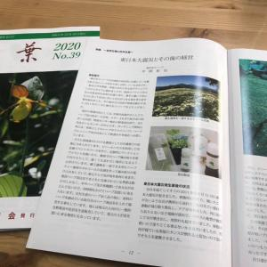 千葉大花卉園芸研究室の会報誌「花葉」に原稿が載りました