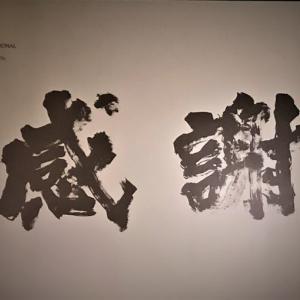 生放送質問会 11月25日 水曜日 21:00頃~