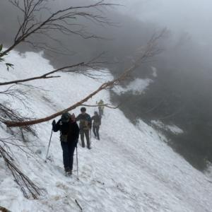 残雪のP2036坪場と苗場山